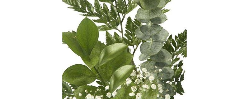 9 Fillere Decorative pentru Buchete