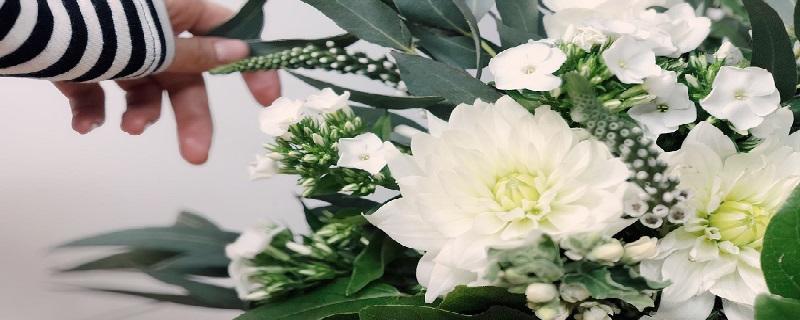 Descoperiti semnificatia florilor pe care le cumparati